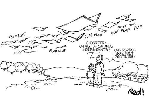 RED-cartoonist-3