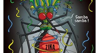 VADOT-BRESIL-ZIKA-CARNAVAL-LE VIF PAGE 3-HD-160211