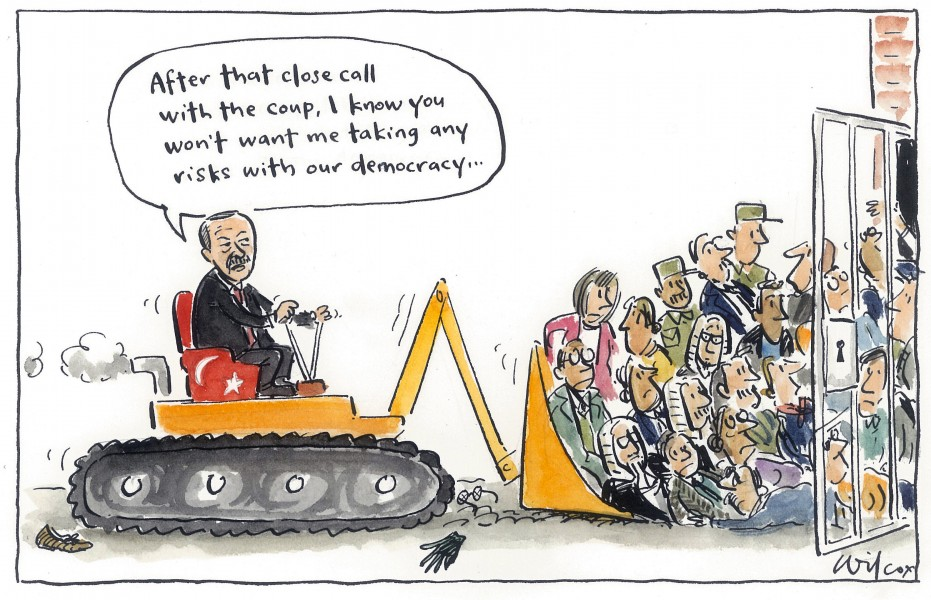 Wilcox (Australia), published in Sydney Moring Herald