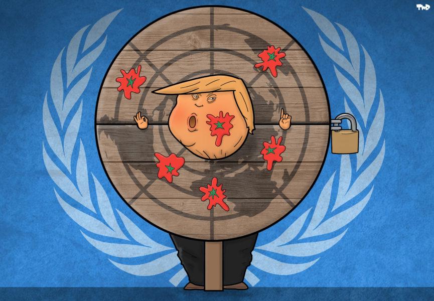 TJEERD ROYAARDS (Pays-Bas / The Netherlands), Cartoon Movement