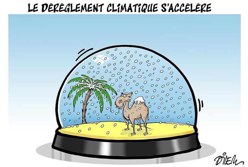(Algeria)