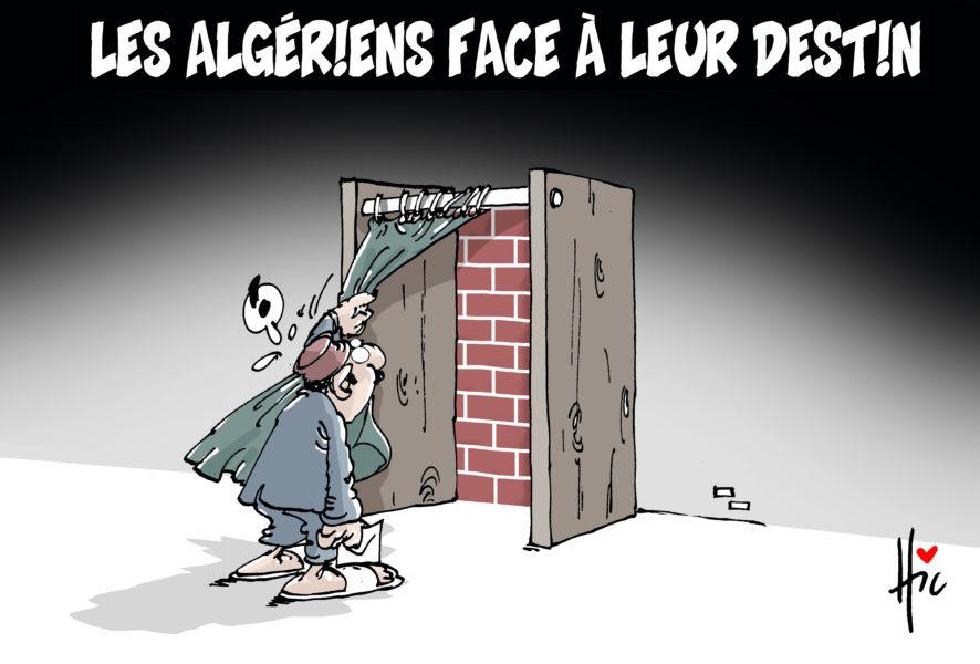 Le Hic (Algérie / Algeria)